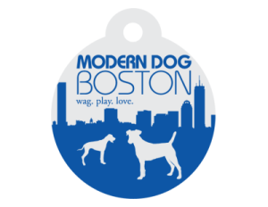 Modern Dog Boston
